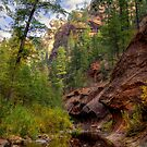 Oak Creek Canyon Stream Crossing by K D Graves Photography