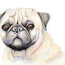 Wilbur the Pug Dog by Shannon Kennedy