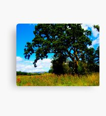Super Saturated Tree Canvas Print