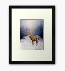 Follow me.-Red stag Framed Print