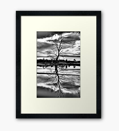 Meditation (Monochrome) - Wonga Wetlands , Albury NSW - The HDR Experience Framed Print