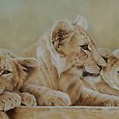 We three...will be kings one day. by Pauline Sharp