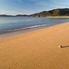 Totaranui Beach, Abel Tasman National Park 6 by Paul Mercer