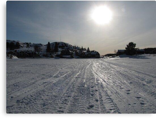 Winterday by PVagberg