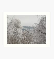 winter country in Northern Sweden Art Print