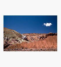 Mantancilla de Atacama, Atacama Desert, Chile Photographic Print