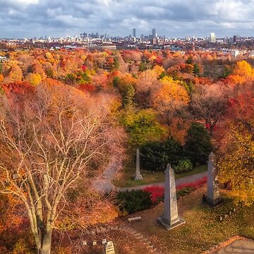 Boston from Mount Auburn Cemetery by mattmacpherson