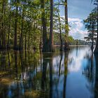 Reflections of a Florida Less Travelled by James Hoffman