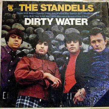 The Standells,  Dirty Water, Standells, Garage, Psych, Punk, Shrink, Standells  by Vintaged