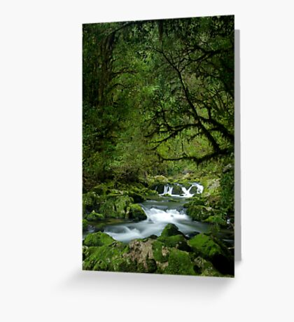Riwaka River Greeting Card