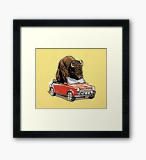Bison in a Mini 2015 Framed Print