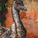 Emu by carol brandt