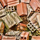 Bricks by carlosporto