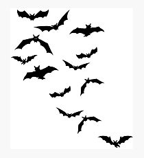 Flying Bat Photographic Print