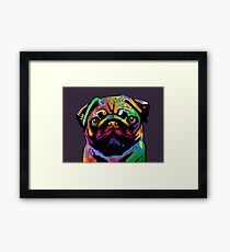 Pug Dog Framed Print