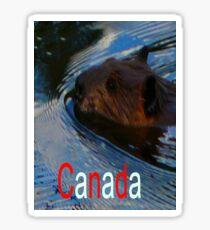 Canada-Beaver,Tee Sticker