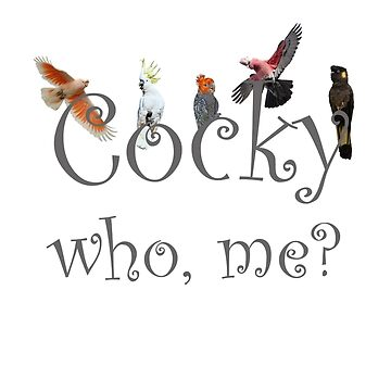 Cocky cockies: who, me? by quentinjlang