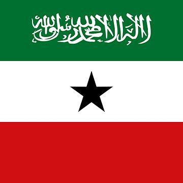 Somililand - National Flag - Current by CrankyOldDude