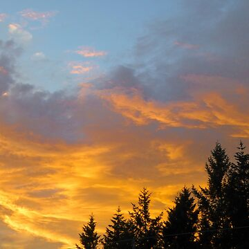 FLAMING SKYS by elainebawden