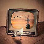FreedomTv  by mtforlife66