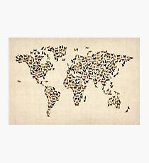 Katzen Karte der Weltkarte Fotodruck