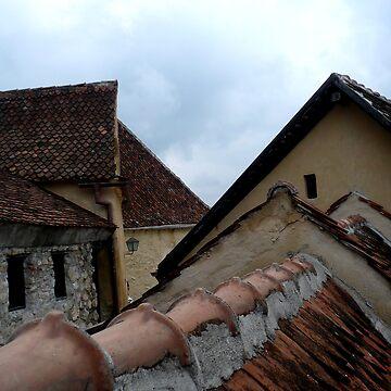 rasnov citadel by marianenache