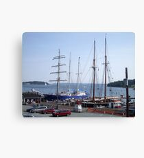 Home From The Sea Canvas Print