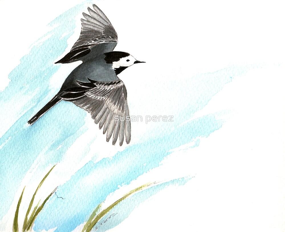 Wagtail Vogel von susanPerez