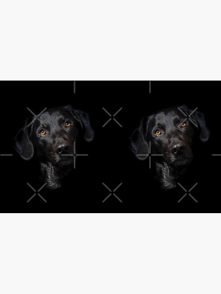 Labrador Dog Design de kudostees