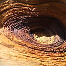 wooden eye by yvesrossetti