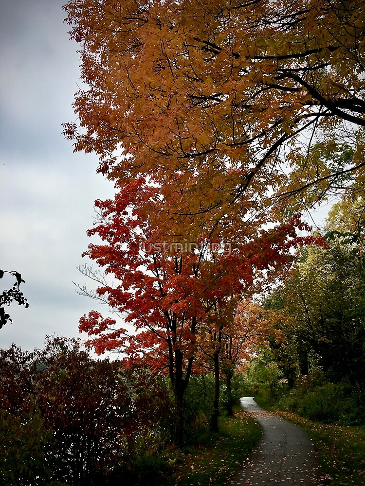 Autumn Path by justminting