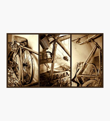 A bicycle for the forgotten Photographic Print