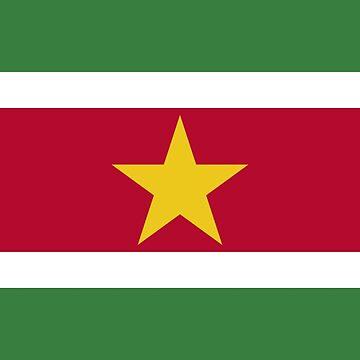 Suriname - Naitonal Flag - Current by CrankyOldDude