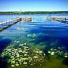 Lake Chautauqua by justminting