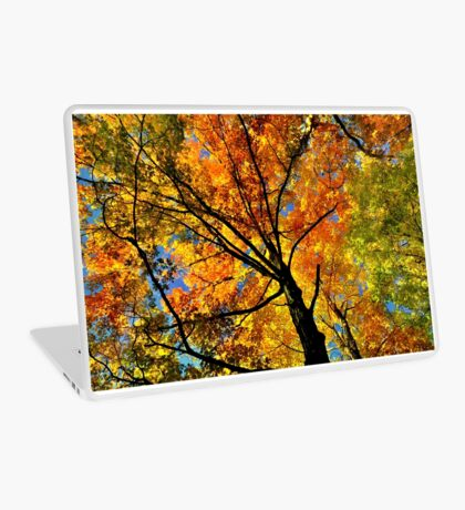 Fall Gamma  Laptop Skin