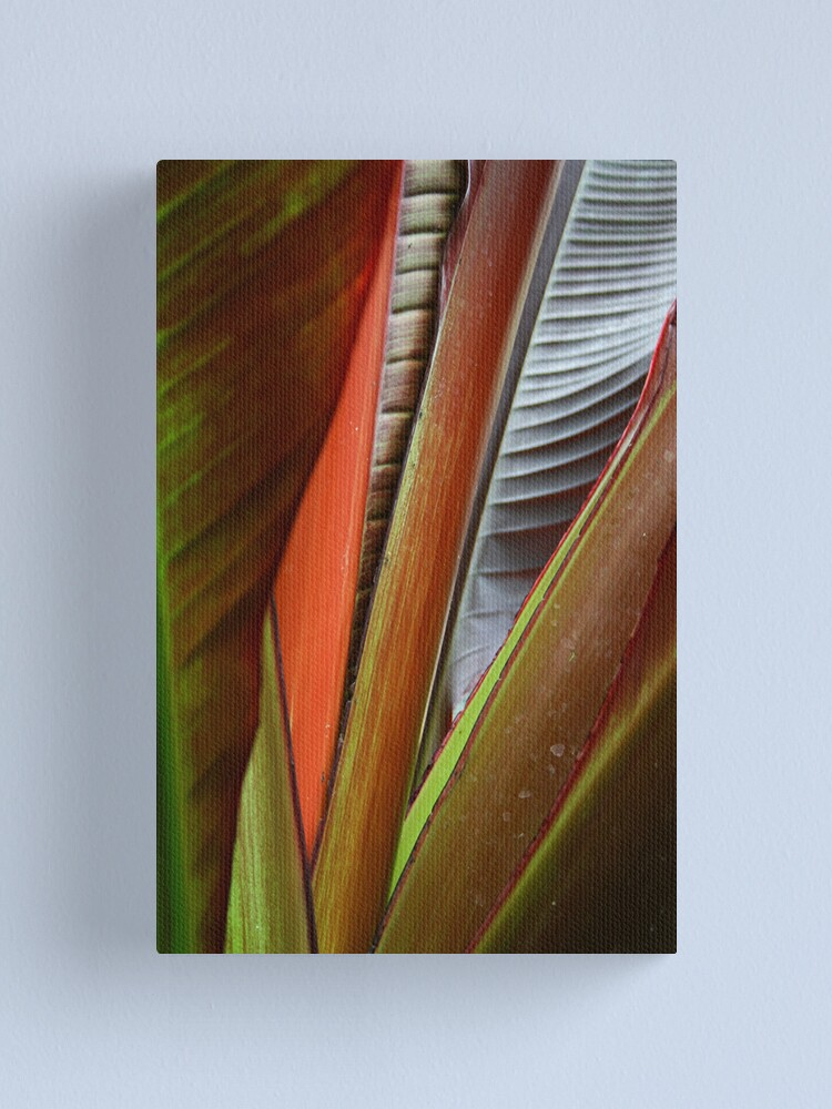 Alternate view of Banana Tree Detail Canvas Print