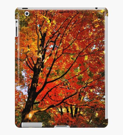 Red Maple iPad Case/Skin