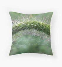ARCH OF TEARDROPS Throw Pillow