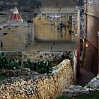 Inside the Citadel by M G  Pettett