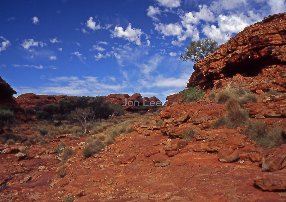 red centre by Jon Lees