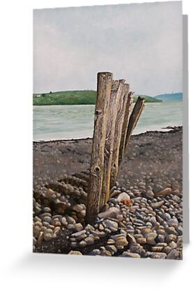 Glin beach breakers,Ireland by Pauline Sharp