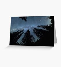 Celestial Starlight In The Forest Near Lake Irene Colorado Greeting Card