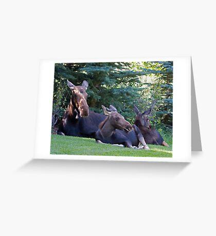 Jackson Hole Yard Art, too Greeting Card
