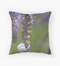 Lavender - Provence, France Throw Pillow