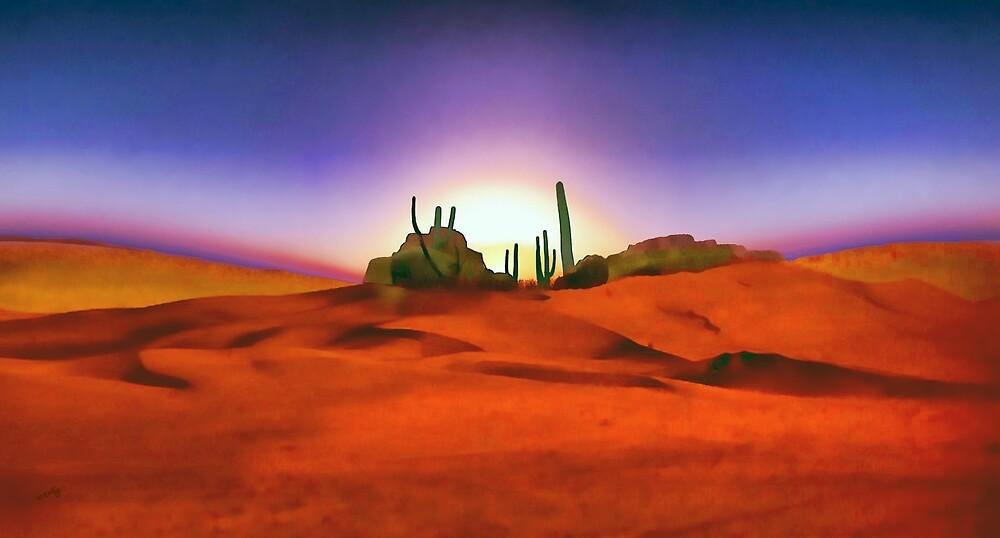 Desert Sands by Valerie Anne Kelly