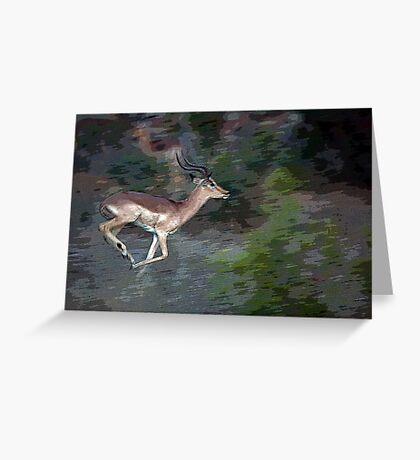 Impala On The Run Greeting Card