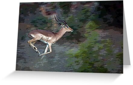 Impala On The Run by Michael  Moss
