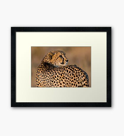 Yearning To Start The Hunt Framed Print