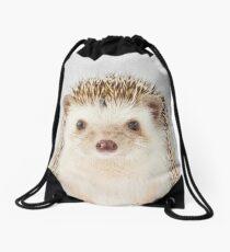 Hedgehog - Colorful Drawstring Bag