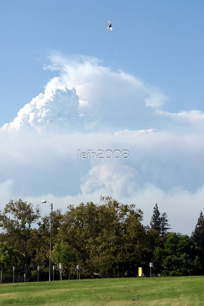California Wilfires 8/30/2009; Sky view from La Mirada Regional Park 90638; Lei Hedger All Rights Reserved 8/30/2009 by leih2008